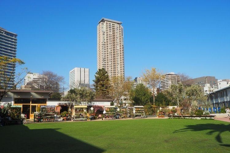 シェアグリーン南青山 広場