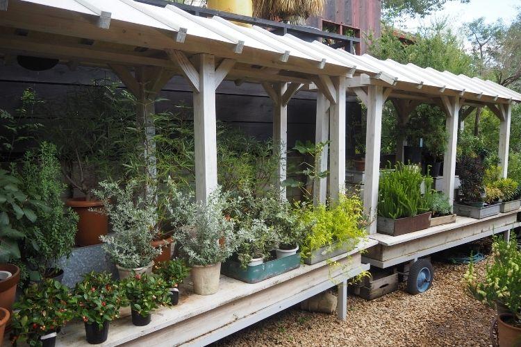 ソルソファーム 『OUTDOOR PLANTS』