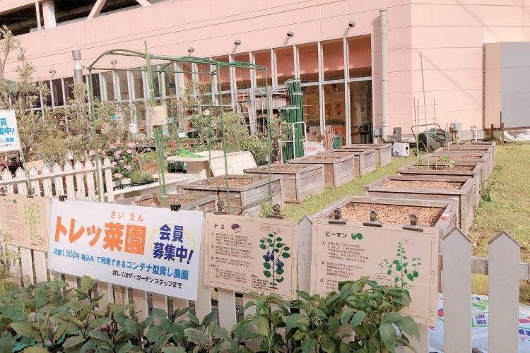 『ザ・ガーデン』トレッサ横浜店 貸菜園