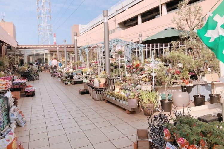 『ザ・ガーデン』トレッサ横浜店 屋外売り場