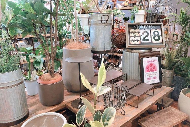 『ザ・ガーデン』トレッサ横浜店 屋内売り場